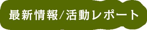 最新情報/活動レポート